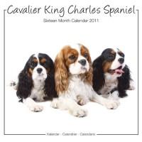 Cavalier King Charles Studio 2011 Calendrier