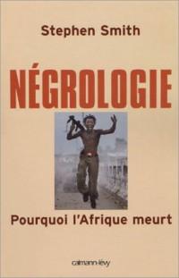 Négrologie : Pourquoi l'Afrique meurt