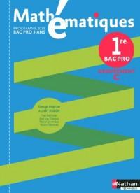 Mathematiques 1re Bac Pro Groupement C : Programme 2010
