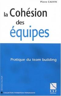 La cohésion des équipes : Pratique du team building