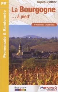La Bourgogne à pied : 40 promenades & randonnées
