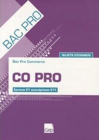 Bac pro commerce CO Pro : Sujets d'examen