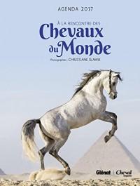 Agenda Cheval 2017 : A la rencontre des chevaux du monde