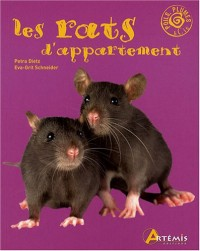 Rats d Appartement