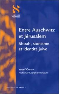 Entre Auschwitz et Jérusalem : Shoah, sionisme et identité juive