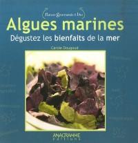 Algues marines : Dégustez les bienfaits de la mer