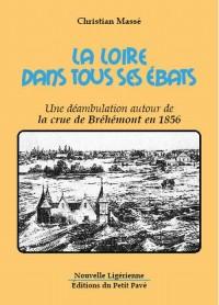 La Loire Dans Tous Ses Ebats, une Deambulation Autour de la Crue de Brehemont en 1856