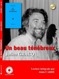 Un beau ténébreux (1CD audio MP3)