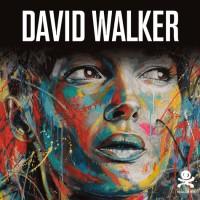 David Walker : Beautiful Chaos