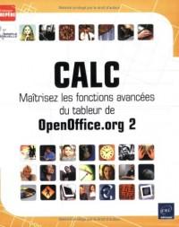 Calc : Maîtrisez les fonctions avancées du tableur de OpenOffice.org 2