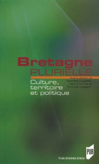 Bretagne plurielle : Culture, territoire et politique