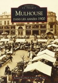 Mulhouse Dans les Annees 1900