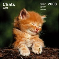 Calendrier 2008 Chats