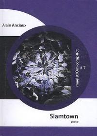 Slamtown : Ethnographie alternative d'une métropole eurasienne