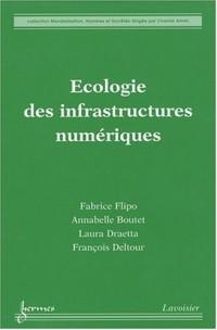 Ecologie des infrastructures numériques