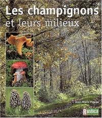 Champignons : Champignons et leurs milieux