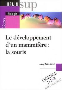 Le développement d'un mammifère : la souris