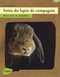 Soins du lapin de compagnie : Bien-être et maladies