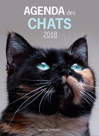 Agenda des chats