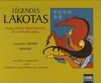 Légendes Lakotas : Deux contes traditionnels de la nation Sioux; Iyan Hokshi, le garçon-pierre suivi de La légende la Longue-Flèche et des chiens-élans