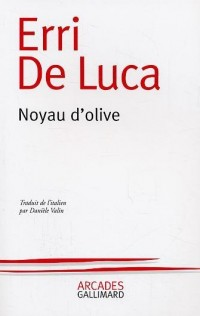 Noyau d'olive