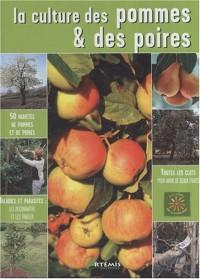 La culture des pommes & des poires
