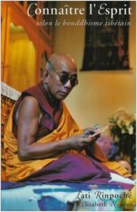 Connatre l'esprit selon le bouddhisme tibtain