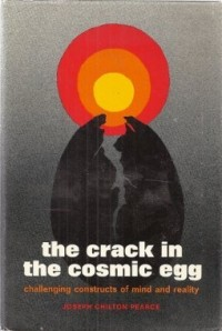 The crack in the cosmic egg : challenging constructs of mind and reality