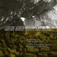 Entre vents, racines et rocs, par les traverses du Mont Ventoux