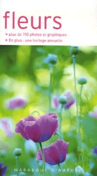 Fleurs : Les reconnaîre facilement sans se tromper