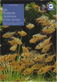 Les poissons tropicaux d'eau douce