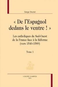 De l'Espagnol dedans le ventre : Catholiques du sud-ouest de la France face à la Réforme - Pack en 2 volumes