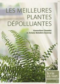 Les meilleures plantes dépolluantes