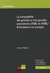 Comptes Annuels des Petites Asbl (les)