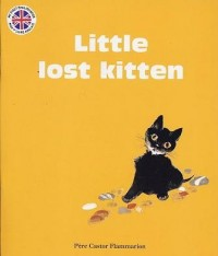 The Little Lost Kitten