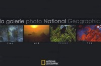 Eau air terre feu : La galerie photo National Geographic