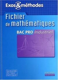 Mathématiques, Bac pro industriel (Manuel)