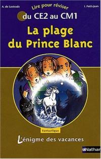 L'Énigme des vacances : La Plage du Prince Blanc, lire pour réviser du CE2 au CM1
