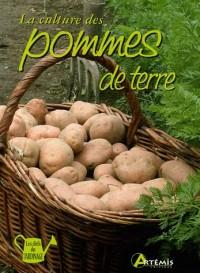 La culture des pommes de terre