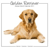 Golden Retrievers Studio 2011 Calendrier