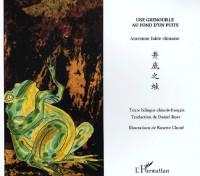 Une grenouille au fond d'un puits : Edition bilingue chinois-français