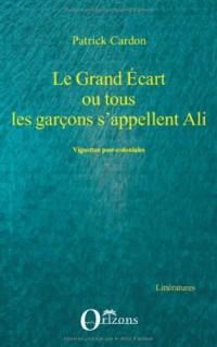 Grand Ecart Ou Tous les Garcons S'Appellent Ali Vignettes Post Coloniales