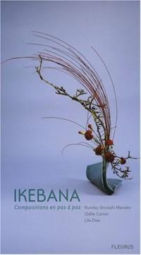 Ikebana : Compositions en pas à pas
