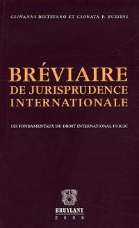 Bréviaire de jurisprudence internationale : Les fondamentaux du droit international public