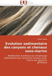 Evolution Sedimentaire Des Canyons Et Chenaux Sous-Marins