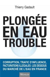 Plongée en eau trouble. Corruption, trafic d'influence, facturations illégales : les dessous du marc