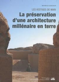 Les vestiges de Mari : La préservation d'une architecture millénaire