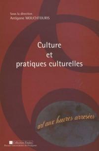 Culture et pratiques culturelles : Actes du colloque 12 mai 2006, Université de Perpignan Via-Domitia