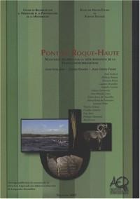 Pont de Roque-Haute : Nouveaux regards sur la néolithisation de la France méditerranéenne