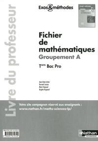 Fichier de Mathematiques Term Bac Pro - Groupement a (Exos et Methodes) Livre Professeur 2011